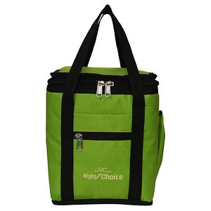 Right Choice Combo Offer Lunch Bags (PARED GREEN) Branded Premium Quality Carry on Tote for School Office Picnic Travel Camping Outdoor Pouch Holder Handbag Compact Heat Preservation Waterproof Hy
