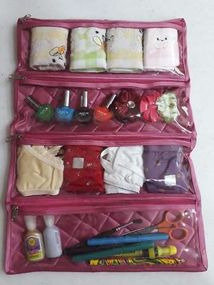 Daily need organizer bags