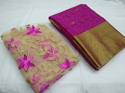 Patola with embroidery blouse