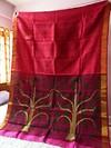 Handwoven Premium Matka by Matka Saree with Jamdani Weaving  Aanchal i