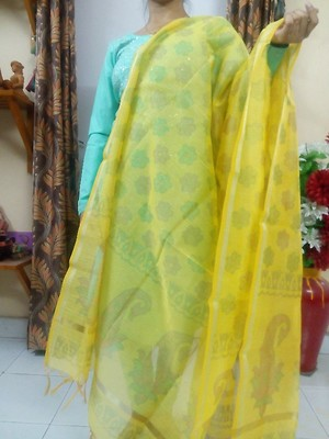 Chanderi Dupatta handcrafted with Chanderi Print on Pallu,  booti all over.