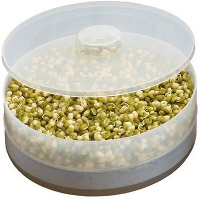 Healthy  Sprout Maker (Medium)