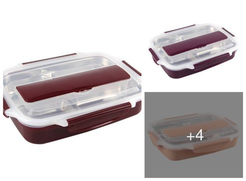 imported-fine-dine-plastic-and-stainless-steel-lunch-box